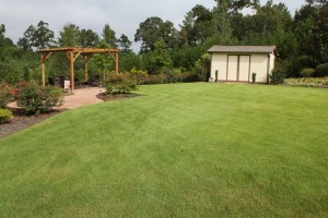A Beautiful Yard in Helena, Al